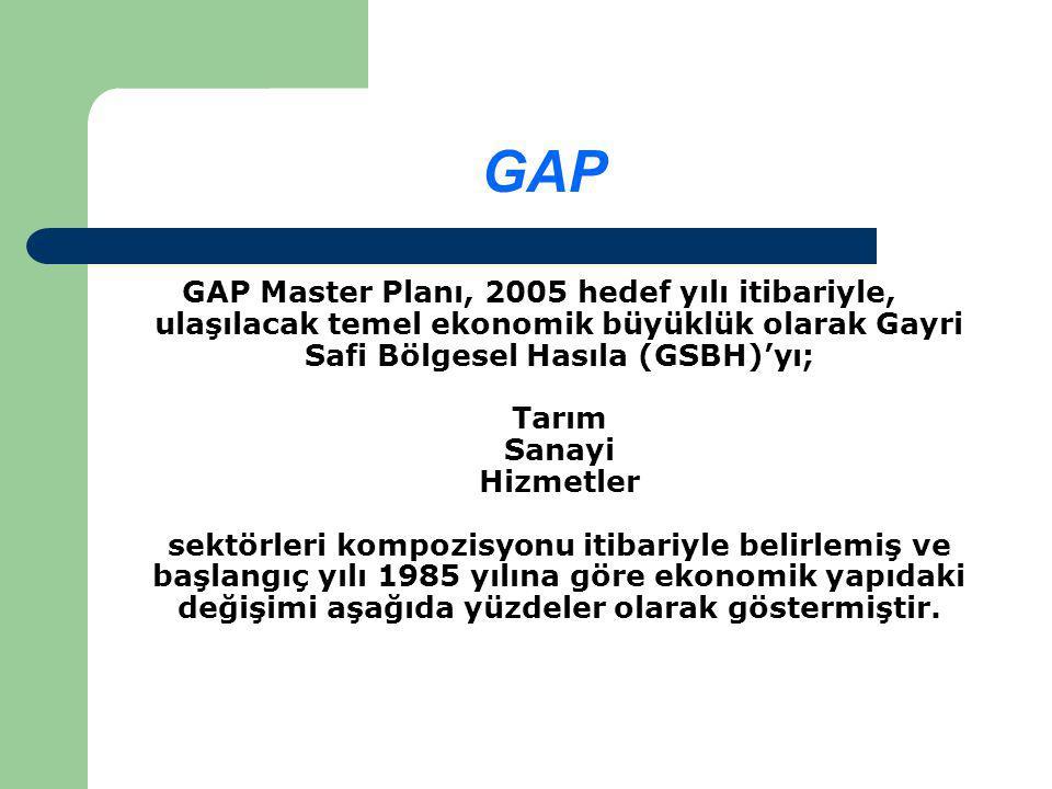 GAP GAP Master Planı, 2005 hedef yılı itibariyle, ulaşılacak temel ekonomik büyüklük olarak Gayri Safi Bölgesel Hasıla (GSBH)'yı; Tarım Sanayi Hizmetler sektörleri kompozisyonu itibariyle belirlemiş ve başlangıç yılı 1985 yılına göre ekonomik yapıdaki değişimi aşağıda yüzdeler olarak göstermiştir.