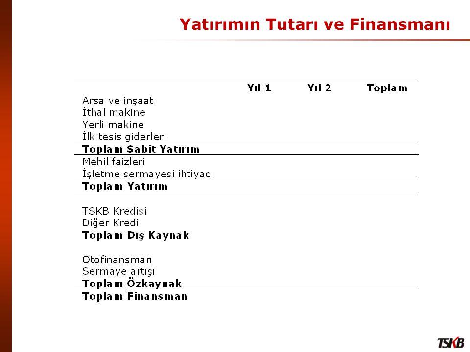 Yatırımın Tutarı ve Finansmanı