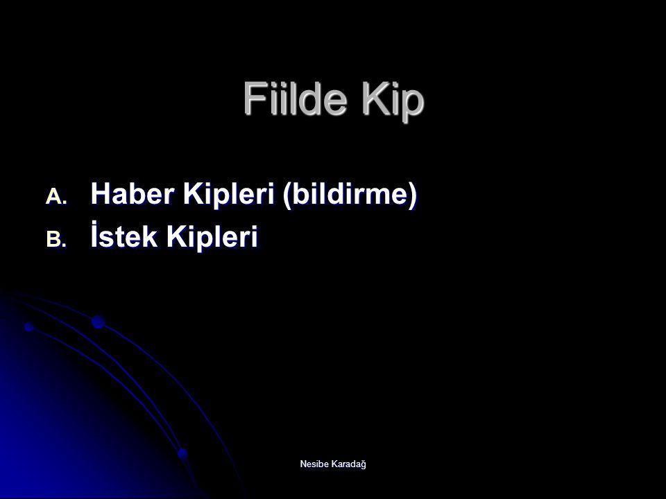 Nesibe Karadağ Haber Kipleri 1.