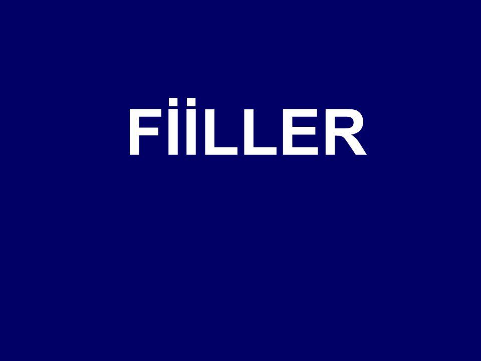 FİİLLER