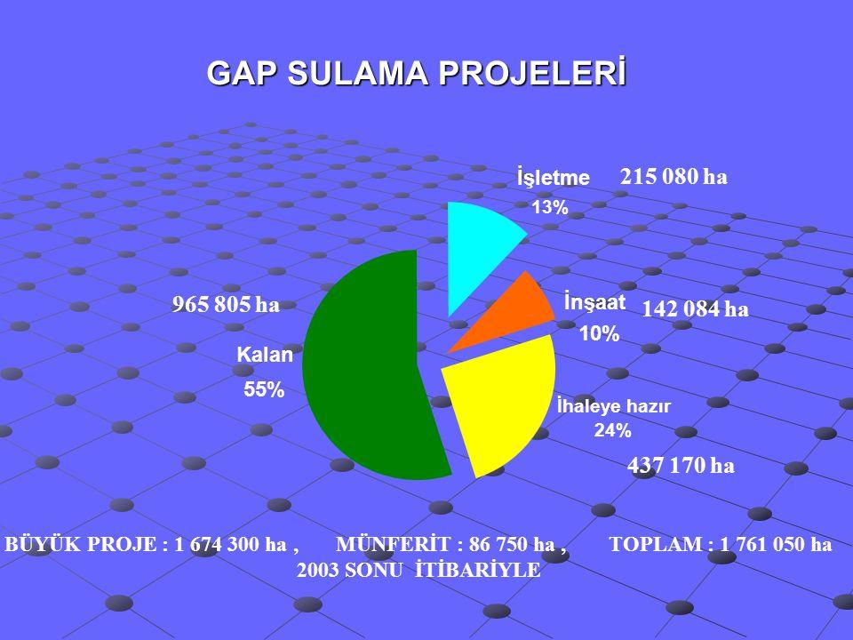 GAP SULAMA PROJELERİ İhaleye hazır 24% İnşaat 10% İşletme 13% Kalan 55% 437 170 ha 215 080 ha 965 805 ha 142 084 ha BÜYÜK PROJE : 1 674 300 ha, MÜNFER