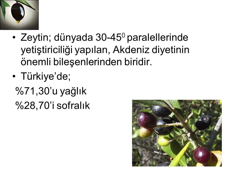 Zeytin; dünyada 30-45 0 paralellerinde yetiştiriciliği yapılan, Akdeniz diyetinin önemli bileşenlerinden biridir. Türkiye'de; %71,30'u yağlık %28,70'i