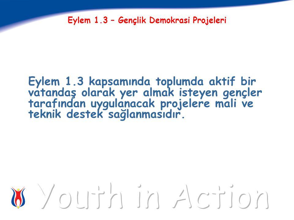 Eylem 1.3 kapsamında toplumda aktif bir vatandaş olarak yer almak isteyen gençler tarafından uygulanacak projelere mali ve teknik destek sağlanmasıdır.