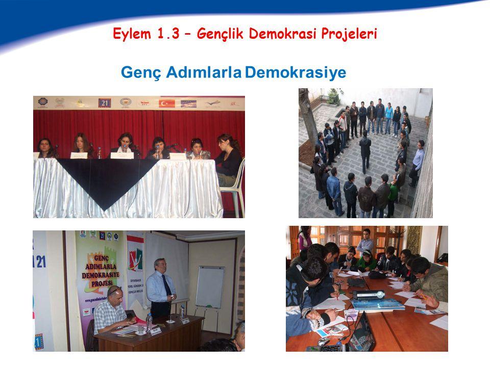 Eylem 1.3 – Gençlik Demokrasi Projeleri Genç Adımlarla Demokrasiye