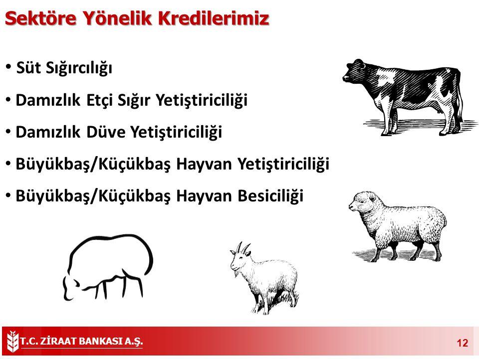 T.C. ZİRAAT BANKASI A.Ş. 12 Süt Sığırcılığı Damızlık Etçi Sığır Yetiştiriciliği Damızlık Düve Yetiştiriciliği Büyükbaş/Küçükbaş Hayvan Yetiştiriciliği
