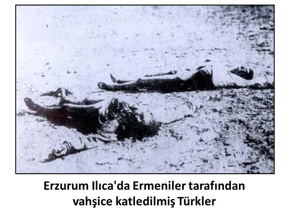 Erzurum Ilıca'da Ermeniler tarafından vahşice katledilmiş Türkler