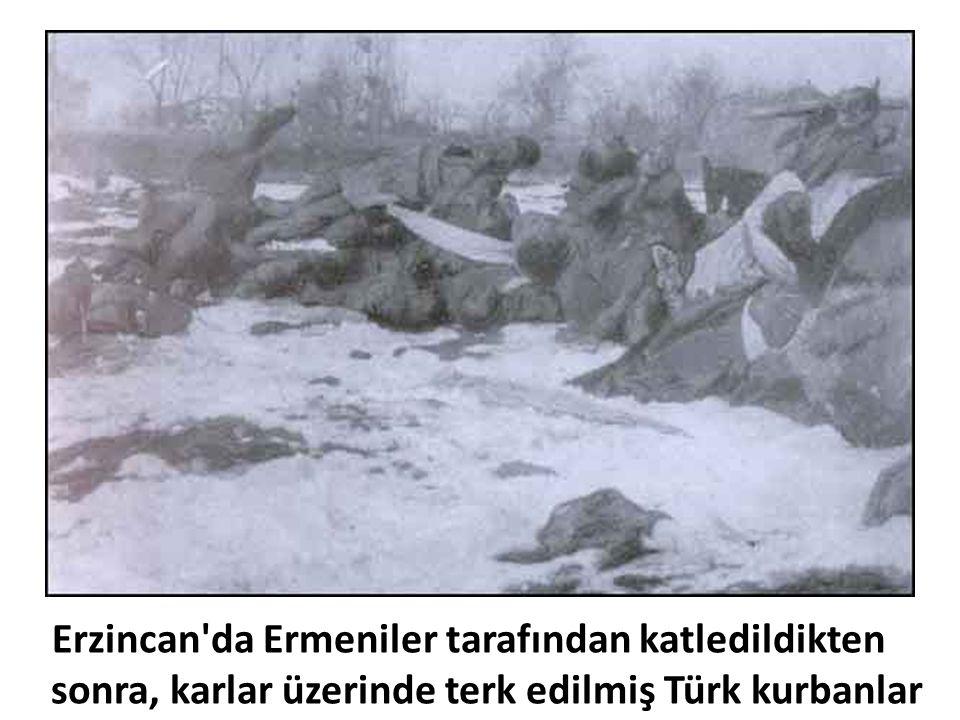 Erzincan'da Ermeniler tarafından katledildikten sonra, karlar üzerinde terk edilmiş Türk kurbanlar