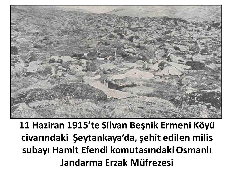11 Haziran 1915'te Silvan Beşnik Ermeni Köyü civarındaki Şeytankaya'da, şehit edilen milis subayı Hamit Efendi komutasındaki Osmanlı Jandarma Erzak Mü