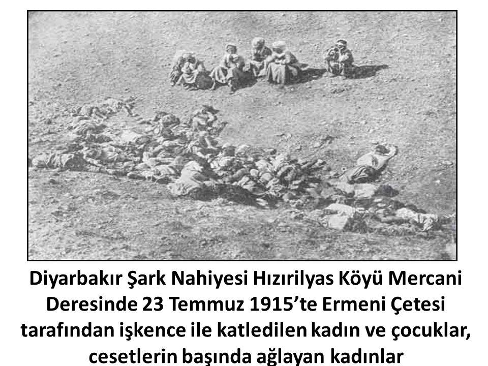 Diyarbakır Şark Nahiyesi Hızırilyas Köyü Mercani Deresinde 23 Temmuz 1915'te Ermeni Çetesi tarafından işkence ile katledilen kadın ve çocuklar, cesetl