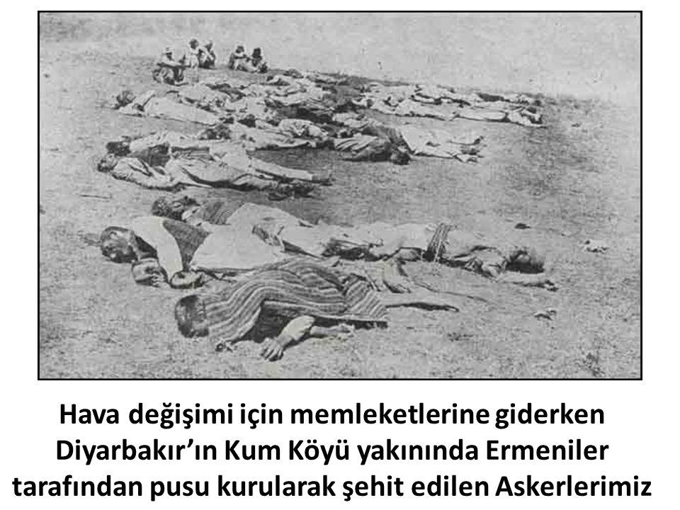 Hava değişimi için memleketlerine giderken Diyarbakır'ın Kum Köyü yakınında Ermeniler tarafından pusu kurularak şehit edilen Askerlerimiz