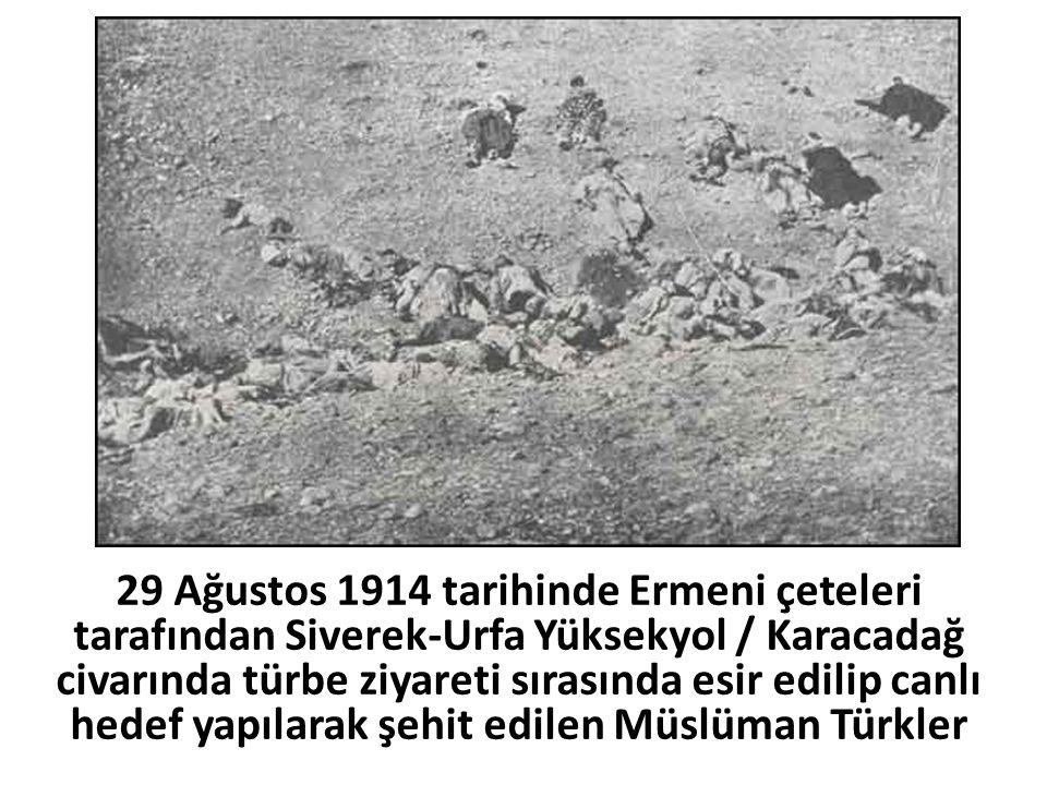 29 Ağustos 1914 tarihinde Ermeni çeteleri tarafından Siverek-Urfa Yüksekyol / Karacadağ civarında türbe ziyareti sırasında esir edilip canlı hedef yap