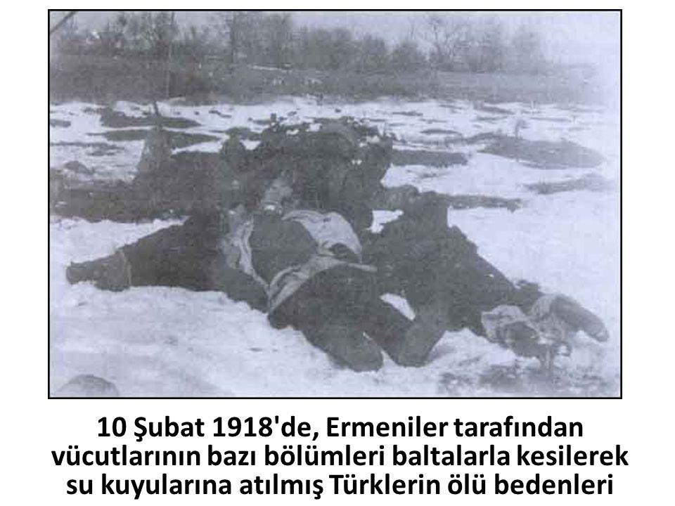 10 Şubat 1918'de, Ermeniler tarafından vücutlarının bazı bölümleri baltalarla kesilerek su kuyularına atılmış Türklerin ölü bedenleri