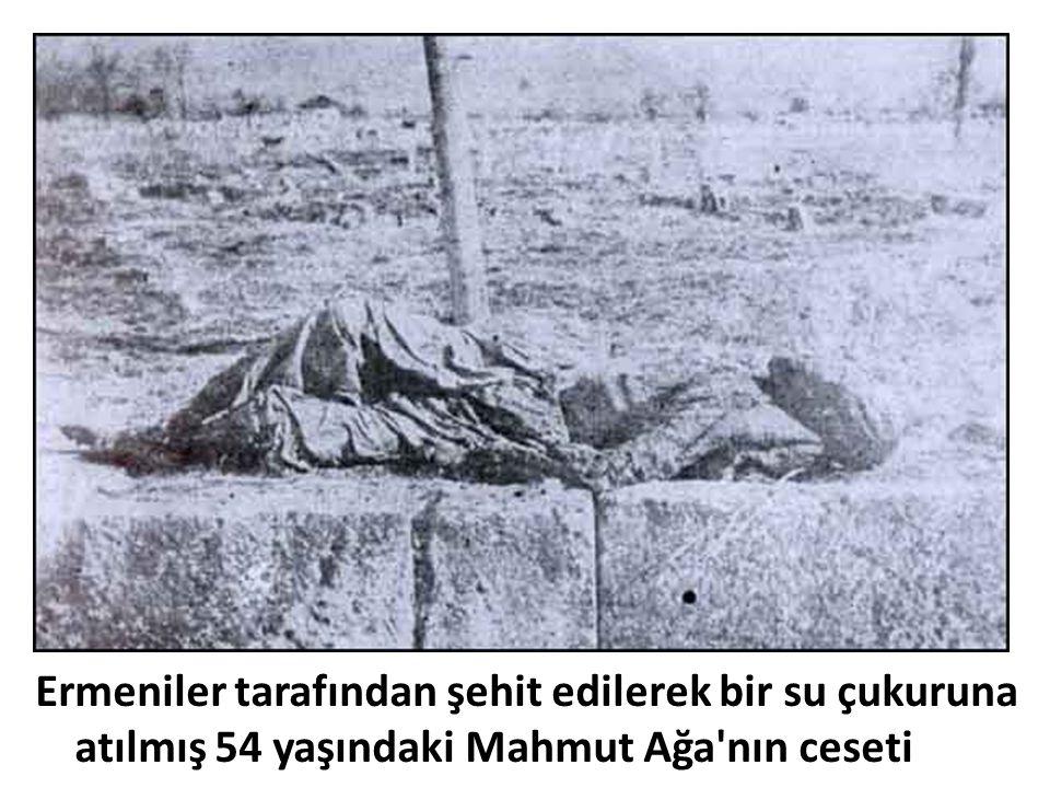 Ermeniler tarafından şehit edilerek bir su çukuruna atılmış 54 yaşındaki Mahmut Ağa'nın ceseti