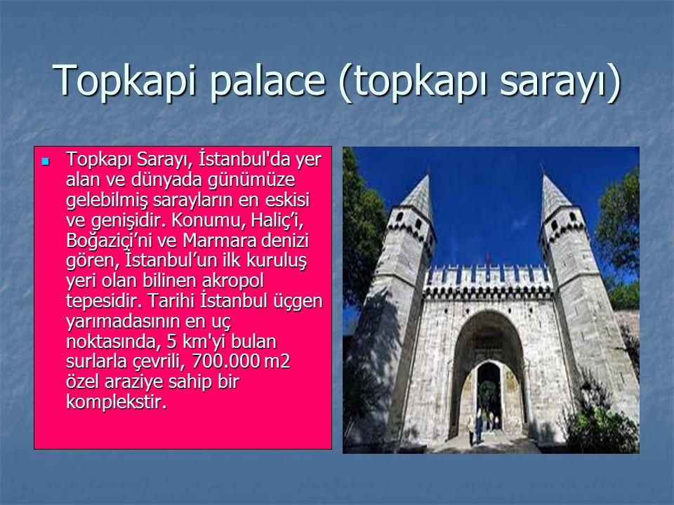 Topkapi palace (topkapı sarayı) Topkapı Sarayı, İstanbul'da yer alan ve dünyada günümüze gelebilmiş sarayların en eskisi ve genişidir. Konumu, Haliç'i