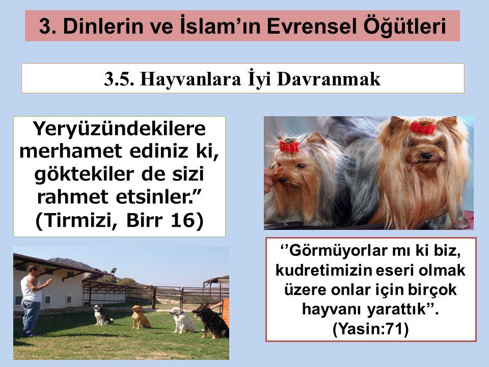 3.Dinlerin ve İslam'ın Evrensel Öğütleri 3.5.