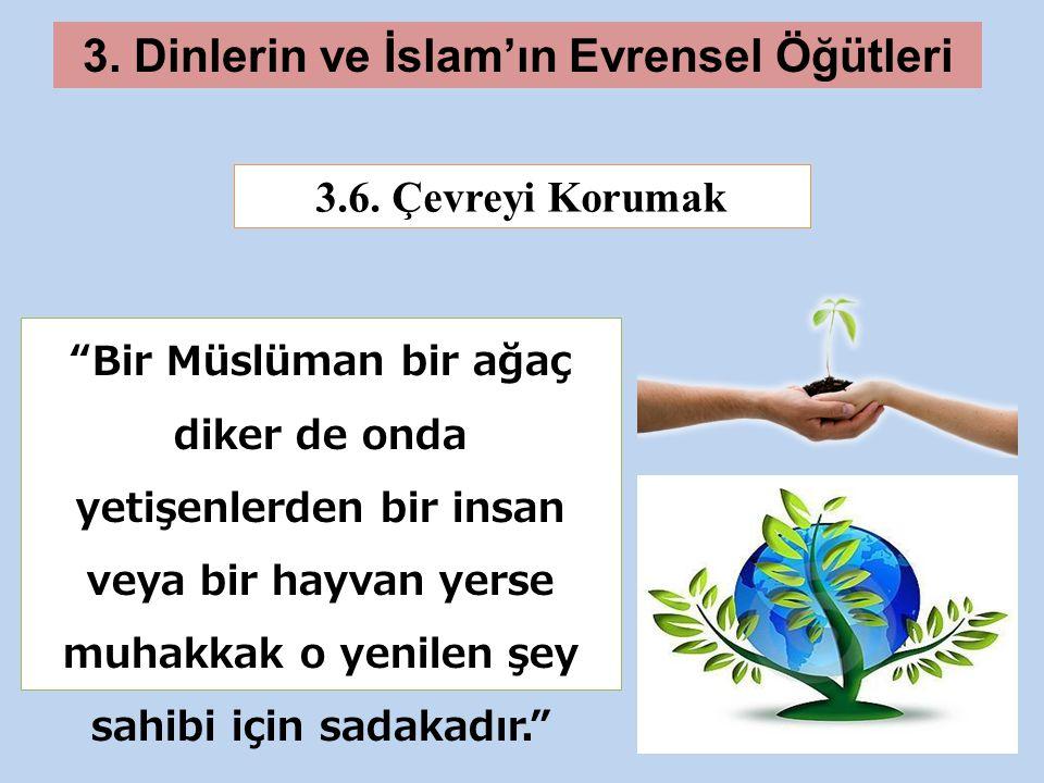 3.Dinlerin ve İslam'ın Evrensel Öğütleri 3.6.