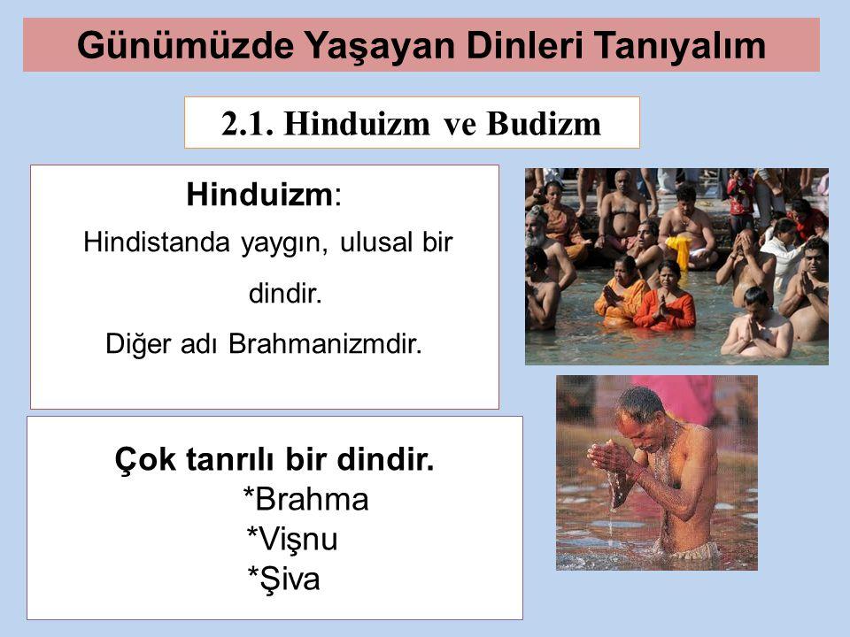 2.1.Hinduizm ve Budizm Hinduizm: Hindistanda yaygın, ulusal bir dindir.