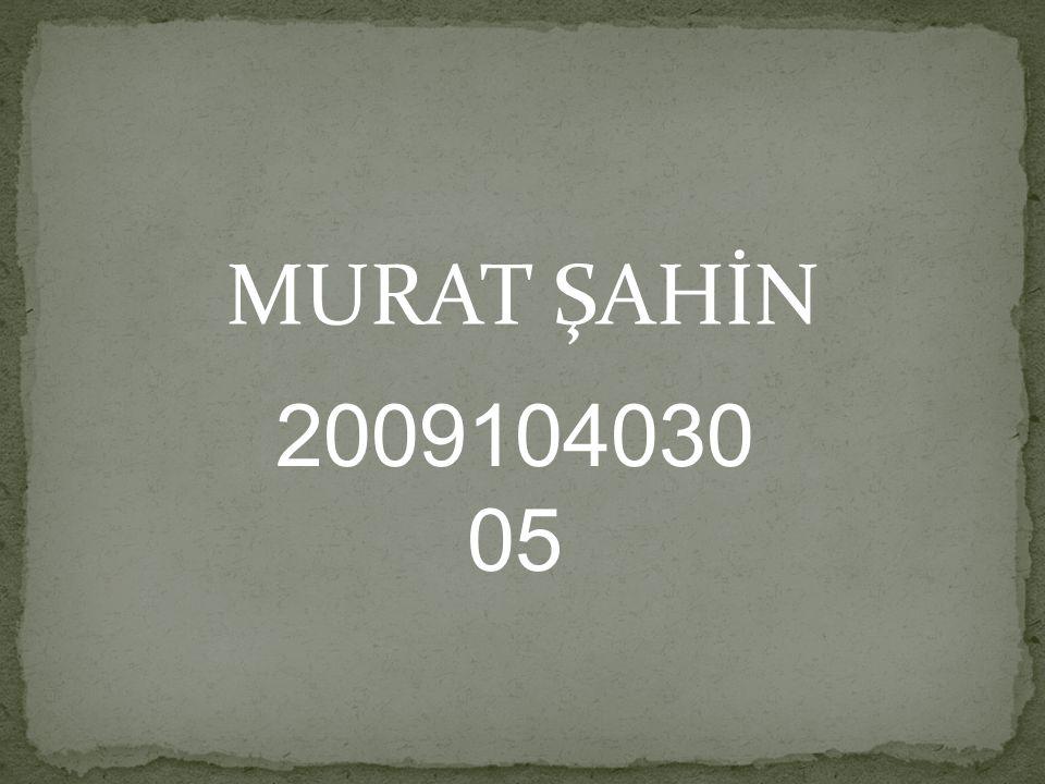 MURAT ŞAHİN 2009104030 05