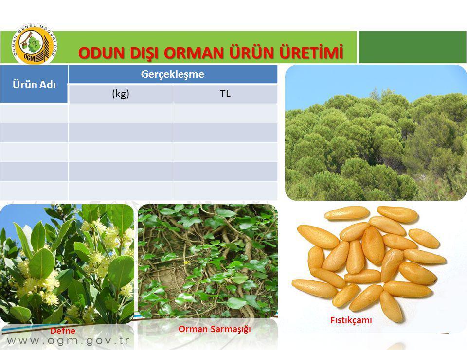 38 ODUN DIŞI ORMAN ÜRÜN ÜRETİMİ Defne Orman Sarmaşığı Fıstıkçamı Ürün Adı Gerçekleşme (kg)TL