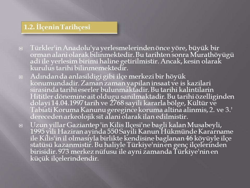  Türkler'in Anadolu'ya yerlesmelerinden önce yöre, büyük bir orman alani olarak bilinmektedir. Bu tarihten sonra Murathöyügü adi ile yerlesim birimi