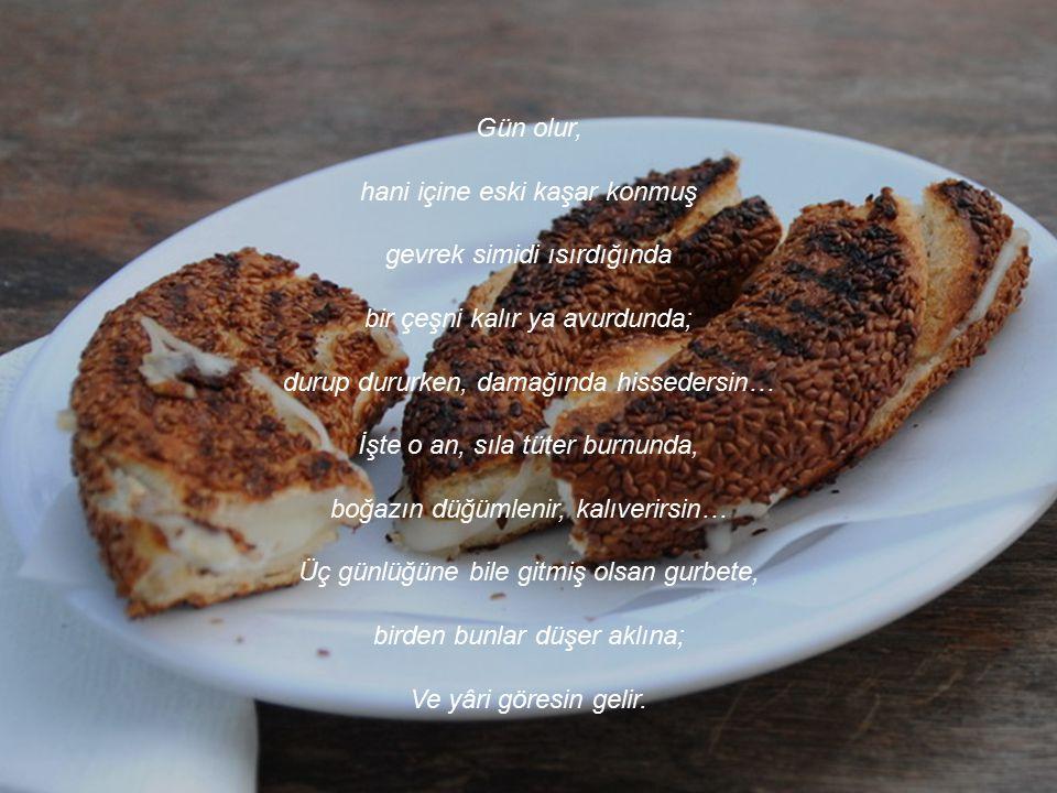 Sevdiceğim, Sıla hasreti nedir bilir misin? Önce, Türkçe duymak ister kulakların. Sonra, beyaz peynir, zeytin aranırsın kahvaltı sofralarında… Ve tabi