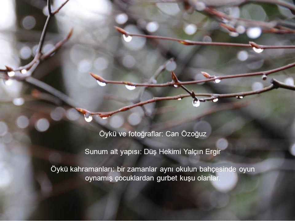 Toprağın yağmur koktuğu bir sabah Eve kavuşmuşsundur. Ö y k ü c ü, New York – İstanbul, Şubat-Mart 2009