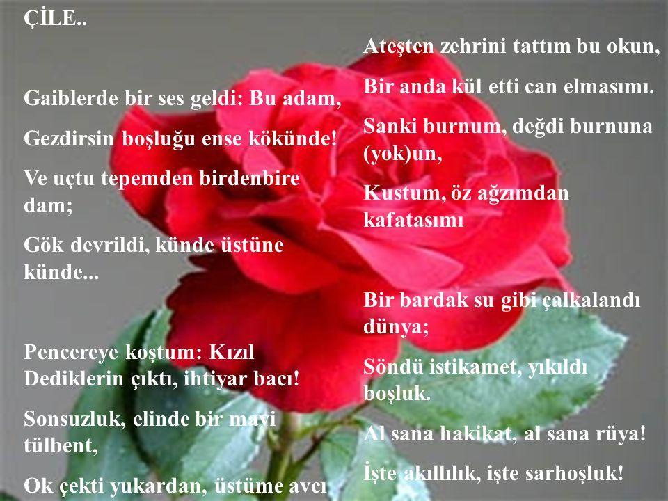 Canım İstanbul ÇileSakarya Türküsü