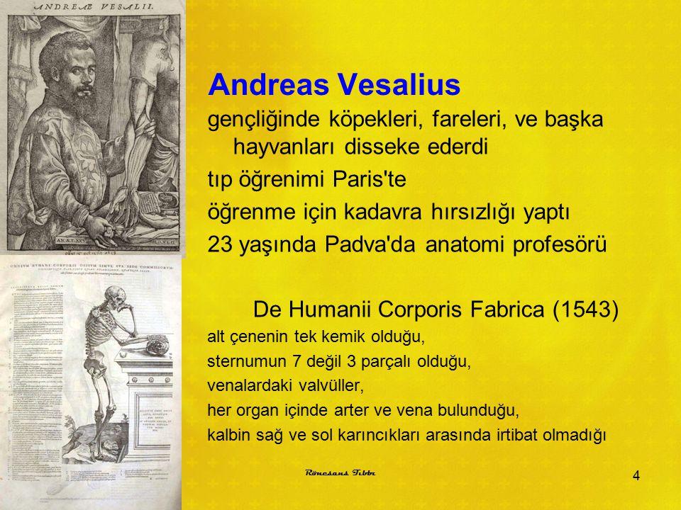 Andreas Vesalius gençliğinde köpekleri, fareleri, ve başka hayvanları disseke ederdi tıp öğrenimi Paris'te öğrenme için kadavra hırsızlığı yaptı 23 ya