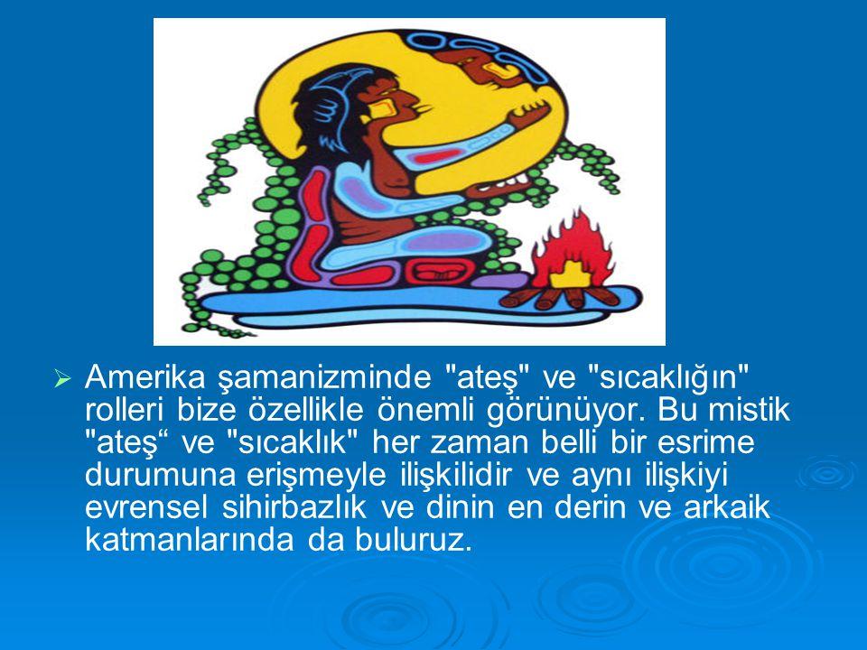   Amerika şamanizminde ateş ve sıcaklığın rolleri bize özellikle önemli görünüyor.