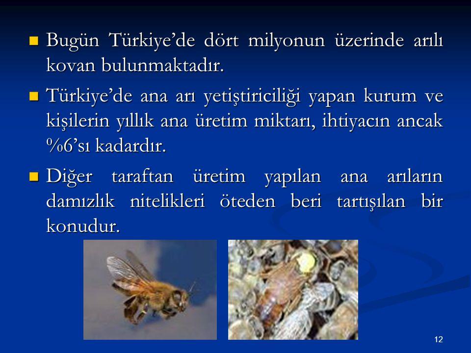 12 Bugün Türkiye'de dört milyonun üzerinde arılı kovan bulunmaktadır. Bugün Türkiye'de dört milyonun üzerinde arılı kovan bulunmaktadır. Türkiye'de an
