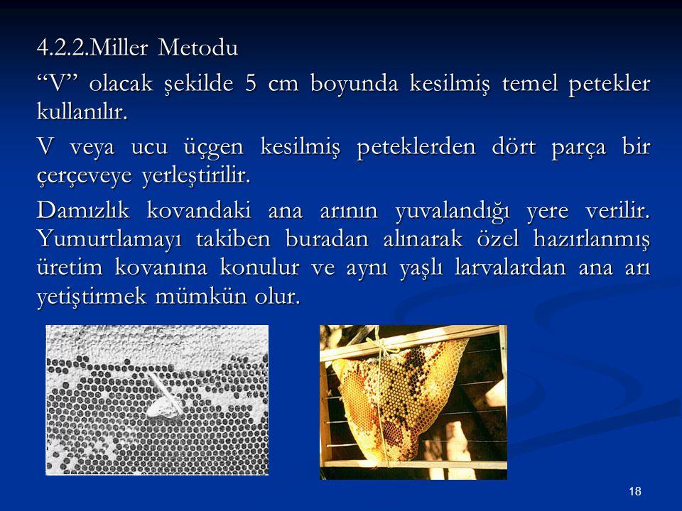 """18 4.2.2.Miller Metodu """"V"""" olacak şekilde 5 cm boyunda kesilmiş temel petekler kullanılır. V veya ucu üçgen kesilmiş peteklerden dört parça bir çerçev"""