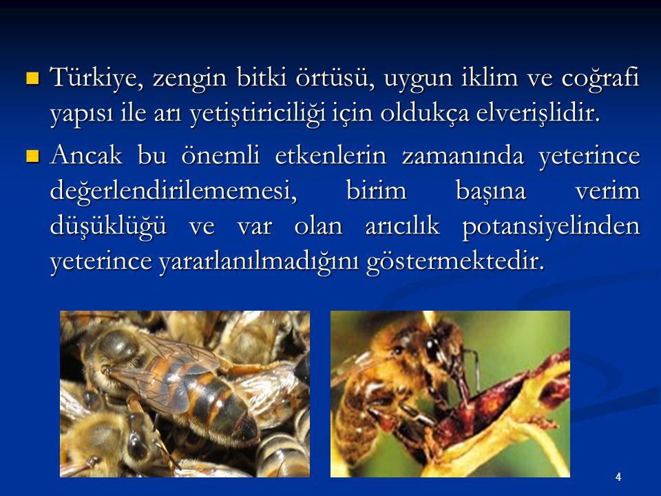 4 Türkiye, zengin bitki örtüsü, uygun iklim ve coğrafi yapısı ile arı yetiştiriciliği için oldukça elverişlidir. Türkiye, zengin bitki örtüsü, uygun i