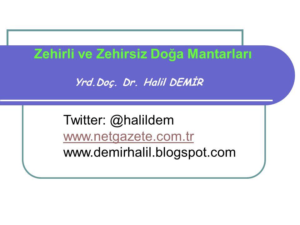 Zehirli ve Zehirsiz Doğa Mantarları Yrd.Doç. Dr. Halil DEMİR Twitter: @halildem www.netgazete.com.tr www.demirhalil.blogspot.com