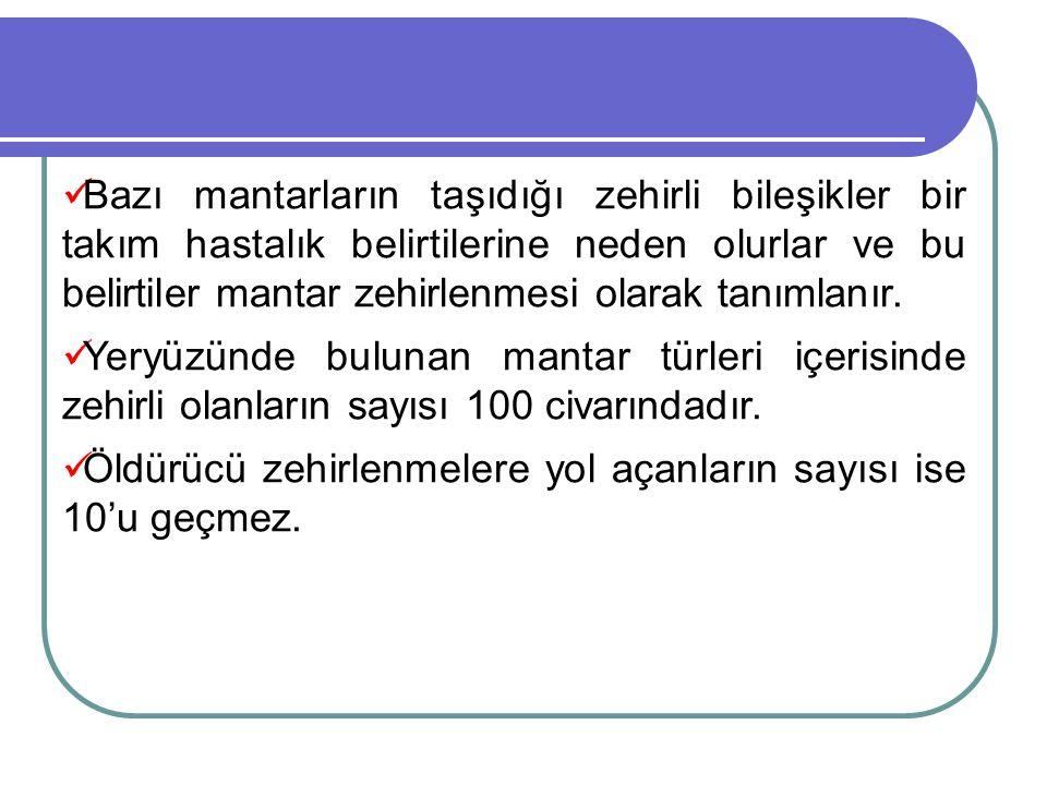  Türkiye'de mantar zehirlenmelerinin başlıca nedeni; halk arasında, özellikle kırsal kesimde, ormanlardan veya çayırlardan mantar toplayıp yeme alışkanlığının oldukça yaygın olmasıdır.