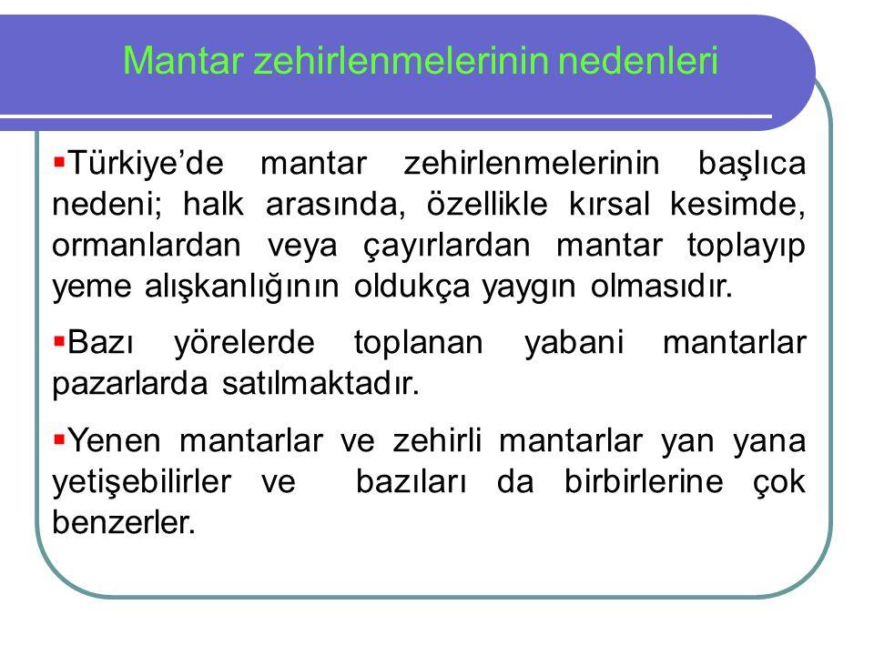  Türkiye'de mantar zehirlenmelerinin başlıca nedeni; halk arasında, özellikle kırsal kesimde, ormanlardan veya çayırlardan mantar toplayıp yeme alışk
