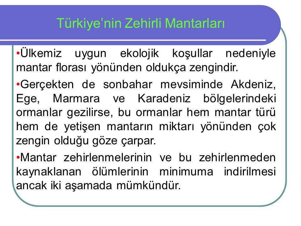 Türkiye'nin Zehirli Mantarları Ülkemiz uygun ekolojik koşullar nedeniyle mantar florası yönünden oldukça zengindir. Gerçekten de sonbahar mevsiminde A