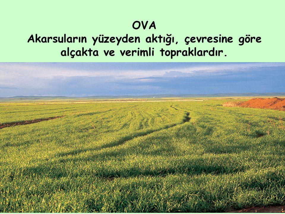 OVA Akarsuların yüzeyden aktığı, çevresine göre alçakta ve verimli topraklardır.