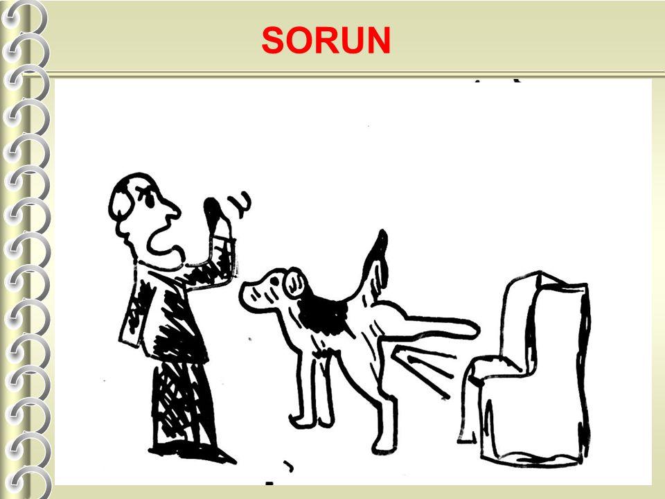 SORUN