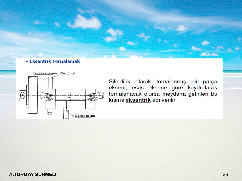 A.TURGAY SÜRMELİ 23
