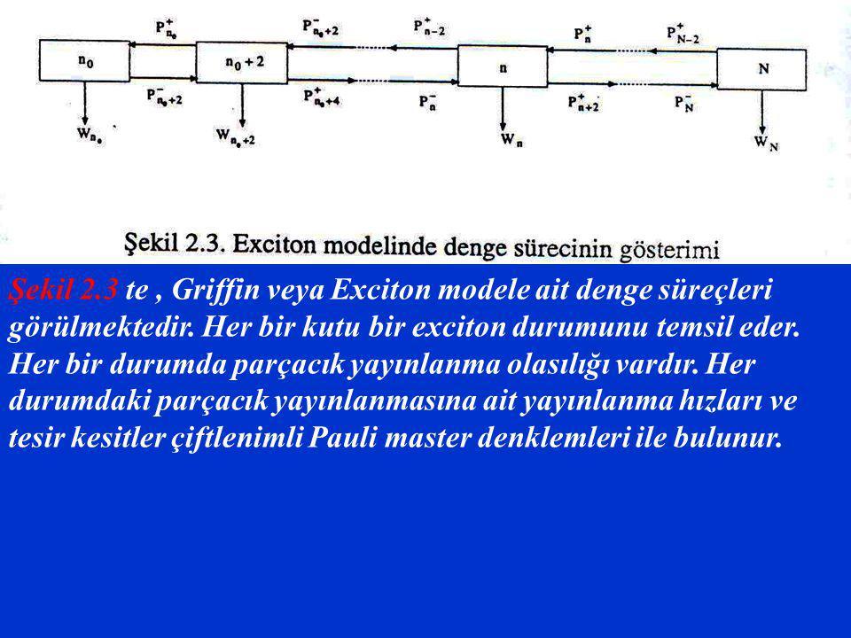 Şekil 2.3 te, Griffin veya Exciton modele ait denge süreçleri görülmektedir. Her bir kutu bir exciton durumunu temsil eder. Her bir durumda parçacık y