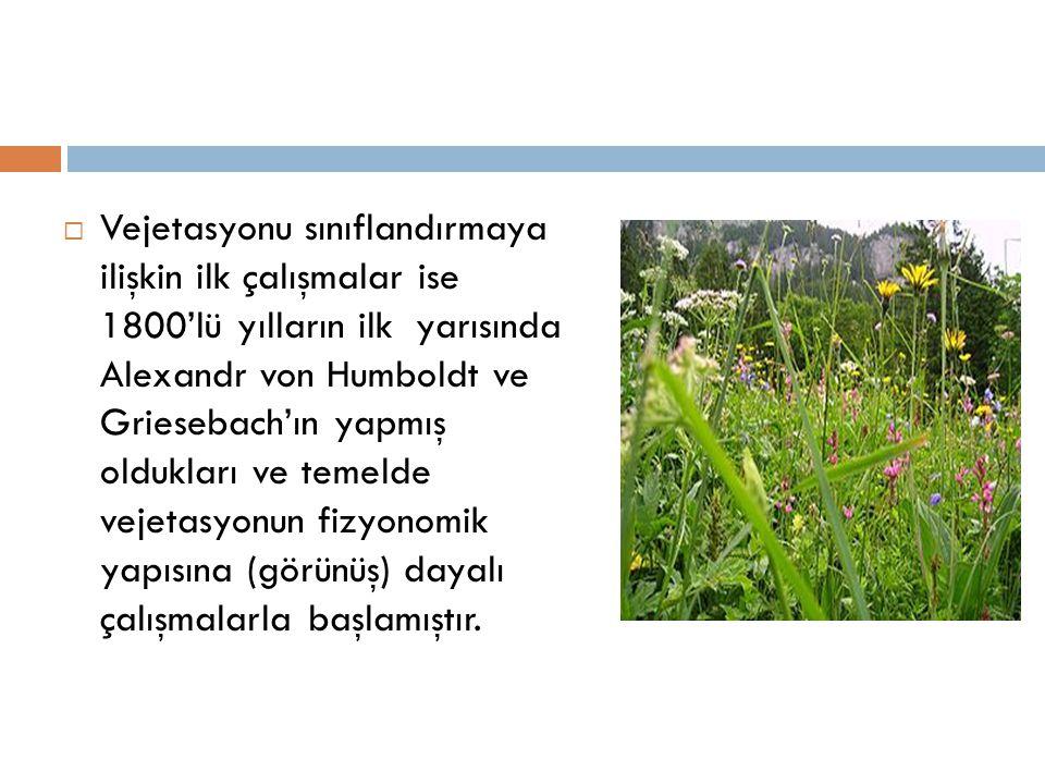 VEJETASYONUN OLUŞMASI  Vejetasyon, yaşama şartları birbirine benzeyen bitkilerin bir araya gelmesi ve bunlar arsındaki ilişkilerden do ğ ar.