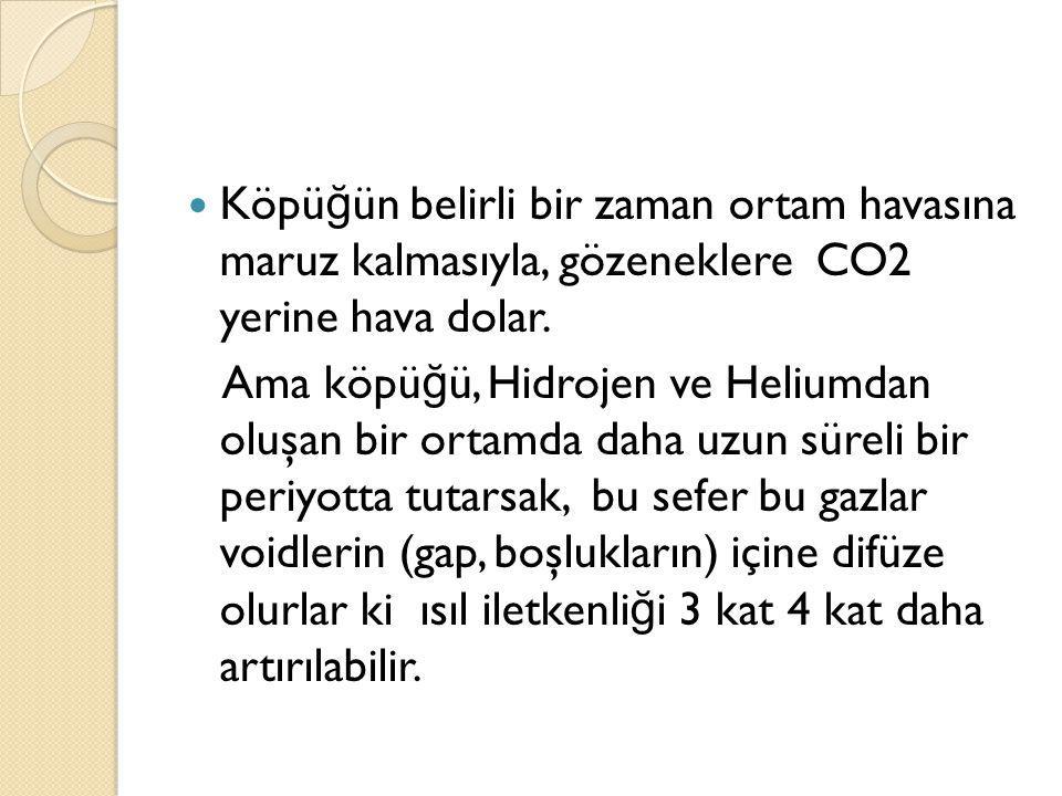 Köpü ğ ün belirli bir zaman ortam havasına maruz kalmasıyla, gözeneklere CO2 yerine hava dolar.