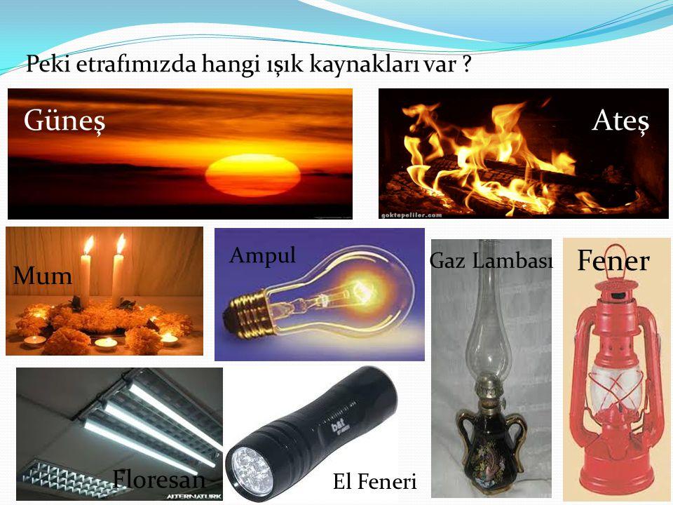 Peki etrafımızda hangi ışık kaynakları var ? GüneşAteş Mum Ampul Gaz Lambası Fener Floresan El Feneri