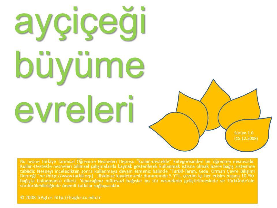 """ayçiçeği büyüme evreleri Sürüm 1.0 (15.12.2008) Bu nesne Türkiye Tarımsal Öğrenme Nesneleri Deposu """"kullan-destekle"""" kategorisinden bir öğrenme nesnes"""