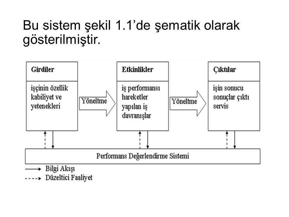 Bu sistem şekil 1.1'de şematik olarak gösterilmiştir.