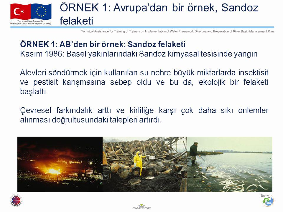 ÖRNEK 1: Avrupa'dan bir örnek, Sandoz felaketi ÖRNEK 1: AB'den bir örnek: Sandoz felaketi Kasım 1986: Basel yakınlarındaki Sandoz kimyasal tesisinde y