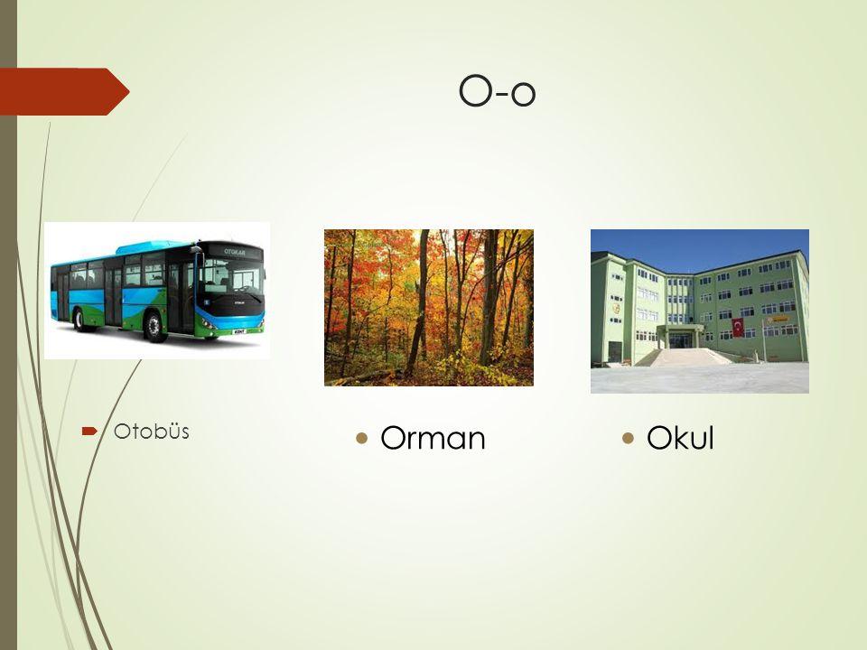 O-o  Otobüs Orman Okul