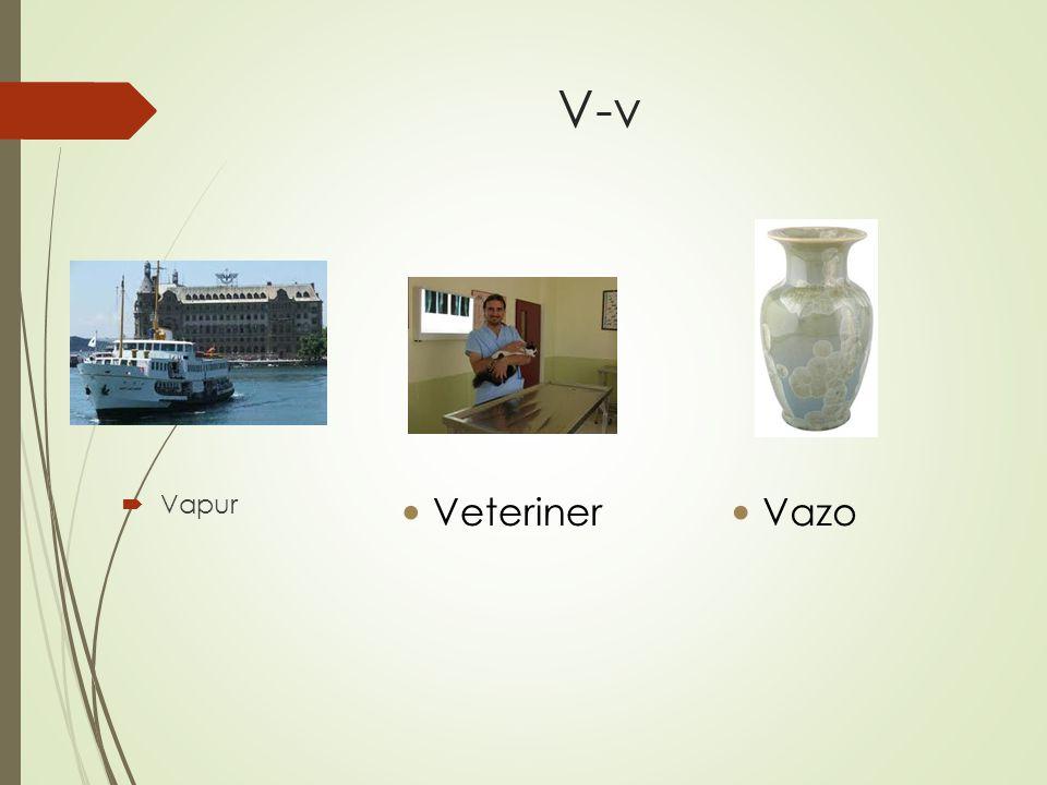 V-v  Vapur Veteriner Vazo