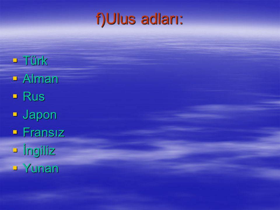 e)Dil adları:  Türkçe  Fransızca  Almanca  Rusça  Arapça  Çince  Japonca  İngilizce