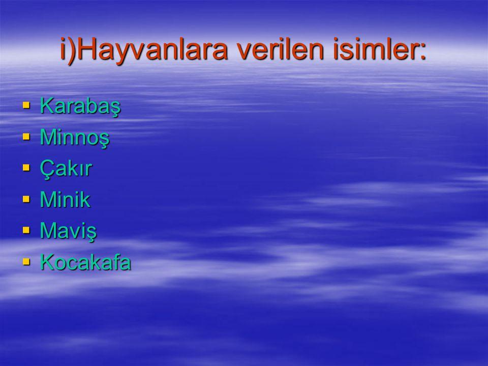 I)Kurum ve kuruluş adları:  Melek Özen İlköğretim Okulu  Türkiye İş Bankası  Milli Eğitim Bakanlığı  Keçiören Devlet Hastanesi  Hacettepe Ünivers